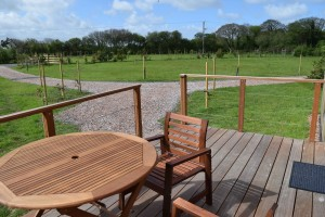 Hardwood Decking Area Outside