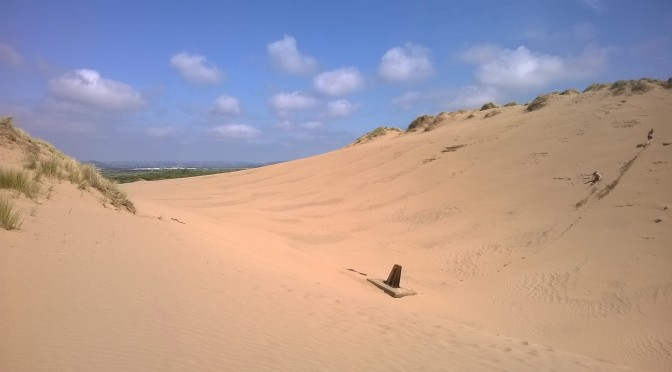 Braunton Burrows and the Gallery Lodges