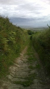 Braunton To Croyde Walk from the Gallery Lodges