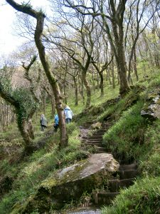 Walk at Lynton and Lymouth Watersmeet