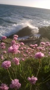 Barricane Beach Cafe Review and Walk to Morte Point Woolacombe